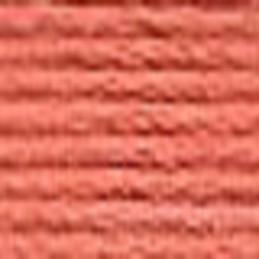 Echevette mouliné ANCHOR pour broderie : n° 338