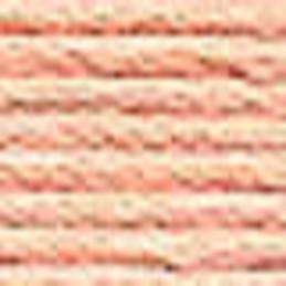 Echevette mouliné ANCHOR pour broderie : n° 881