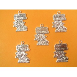 LOT  5 CHARMS METALS : mon...