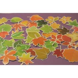 LOT DE 46 STICKERS : feuilles d'arbres printemps automne