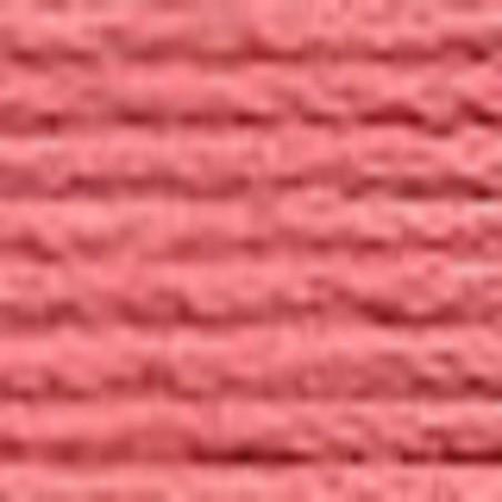 Echevette mouliné ANCHOR pour broderie : n° 076